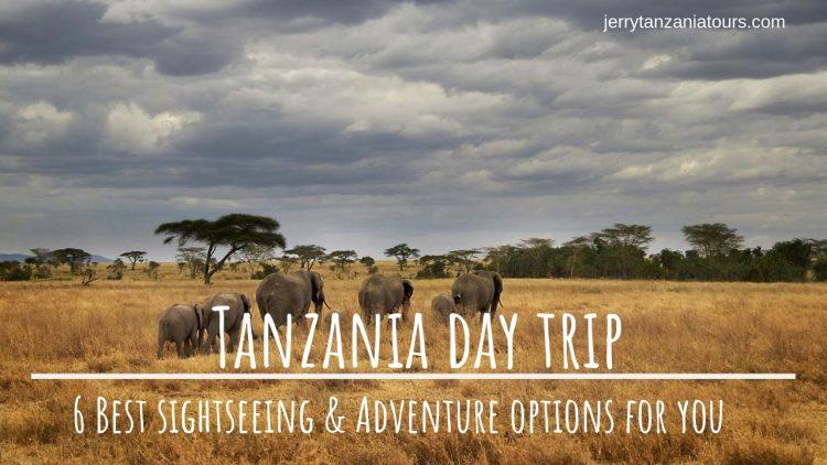 Tanzania Trips
