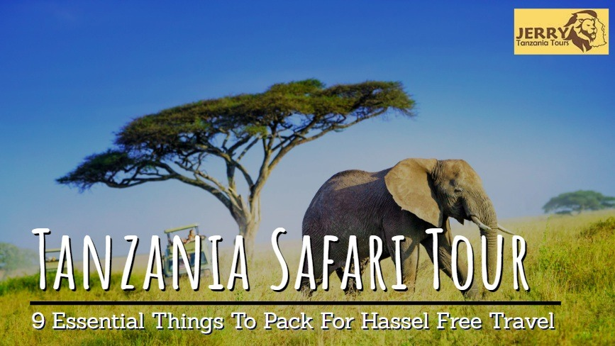 Pack 9 Essential Things To Have A Hassle-Free Tanzania Safari Tours
