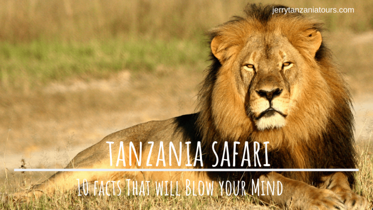 Interesting facts about Tanzania