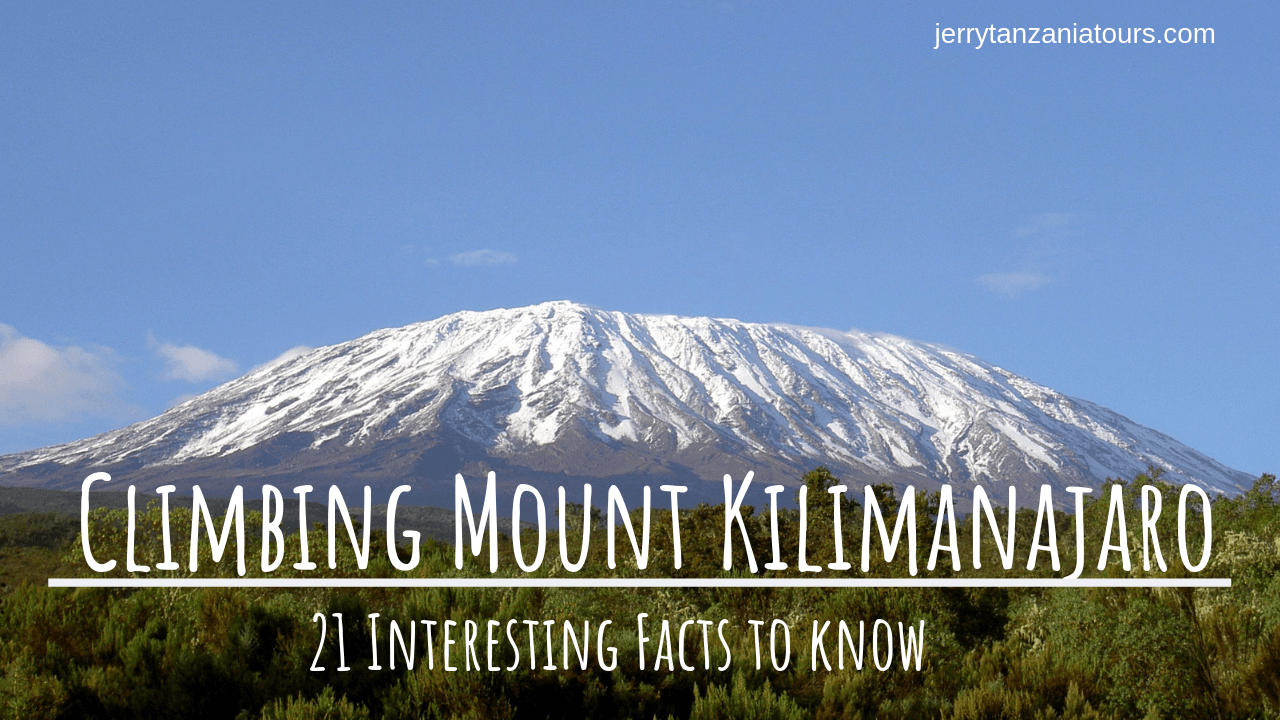 21 Interesting Facts To Know Before Climbing Mount Kilimanjaro