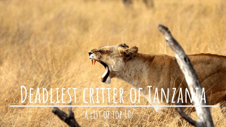 top 10 deadly species of Tanzania