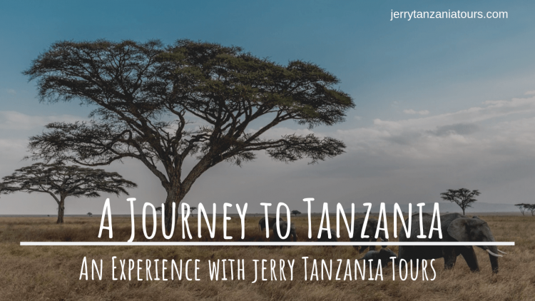 Experience Tanzania