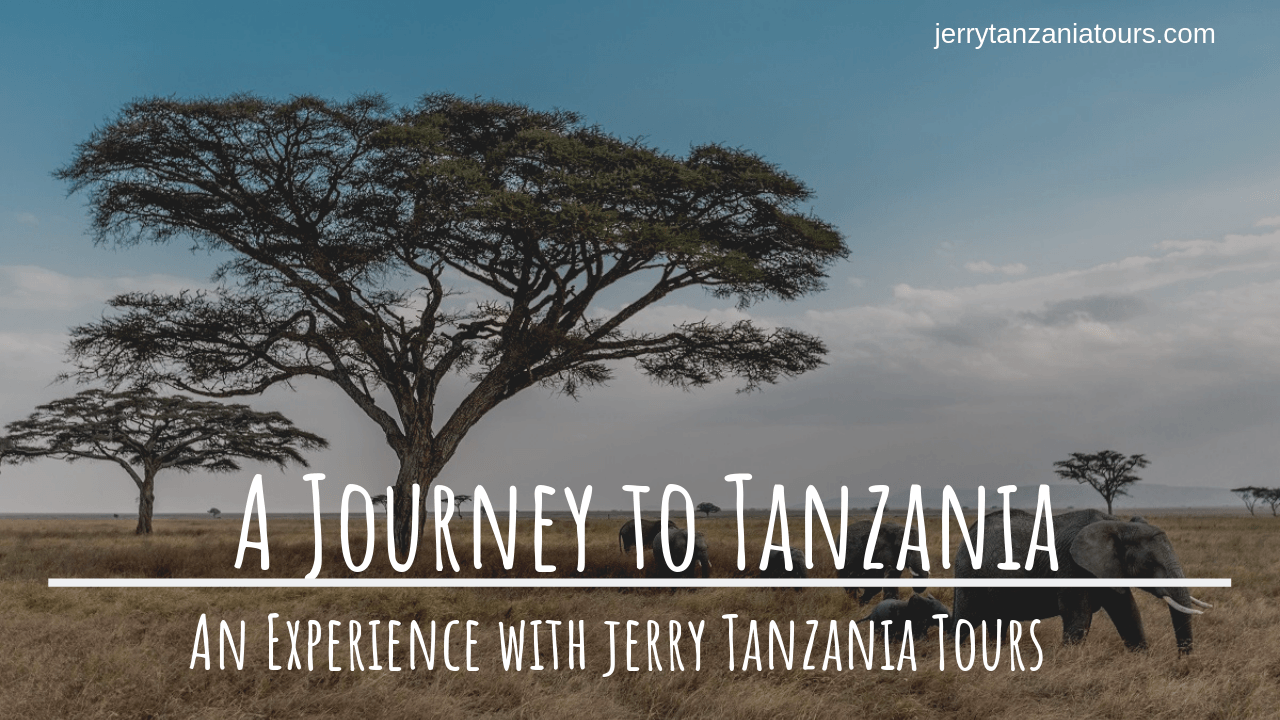 Why Jerry Tanzania Is The Best Tour Operator For An Incredible Holiday In Tanzania?