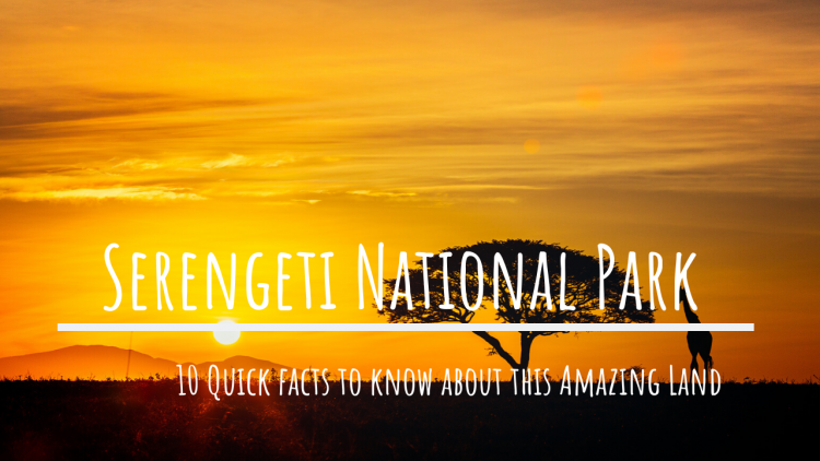 facts about Serengeti