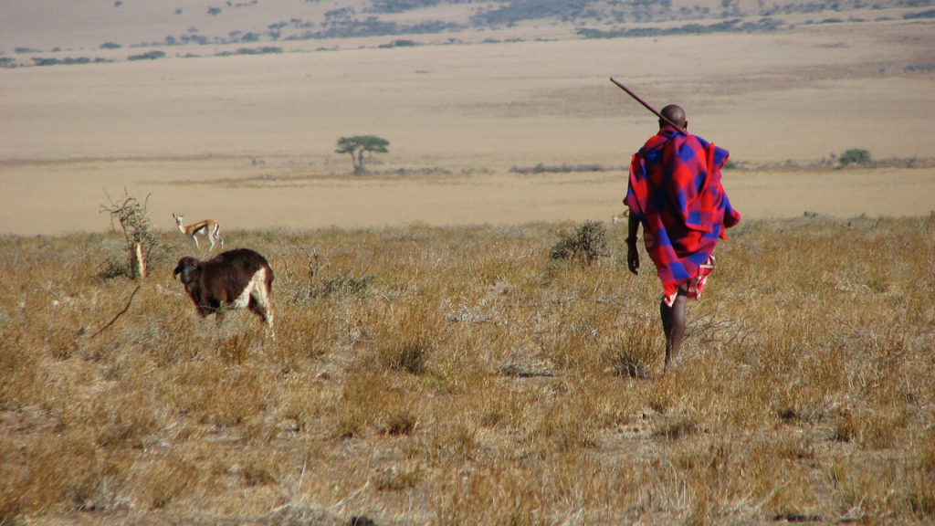 History of Serengeti