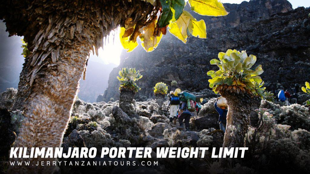 Kilimanjaro Porter Weight Limit