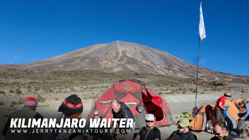 Kilimanjaro Waiter