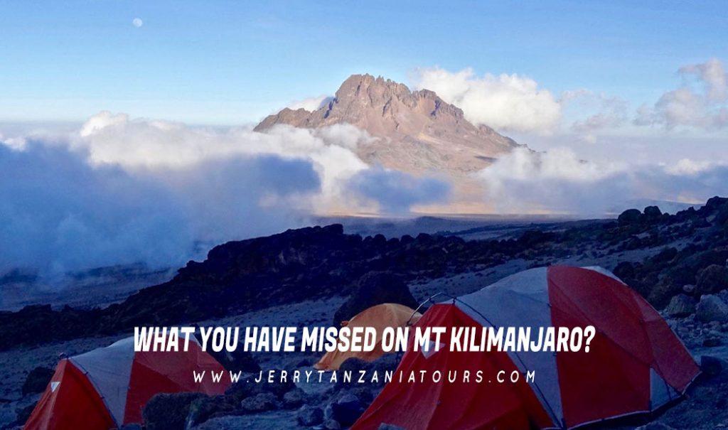 Mt Kilimanjaro Facts