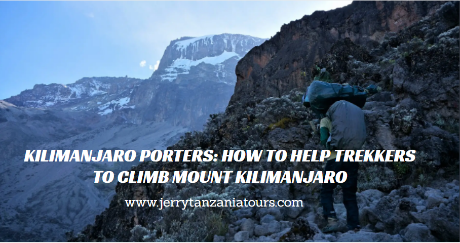 Kilimanjaro Porters: How to Help Trekkers to Climb Mount Kilimanjaro with No Worries