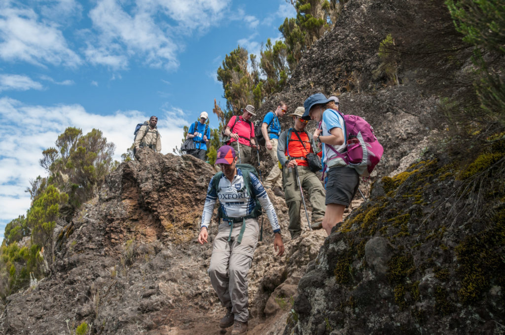 Wondering For The Best Route To Climb Kilimanjaro?