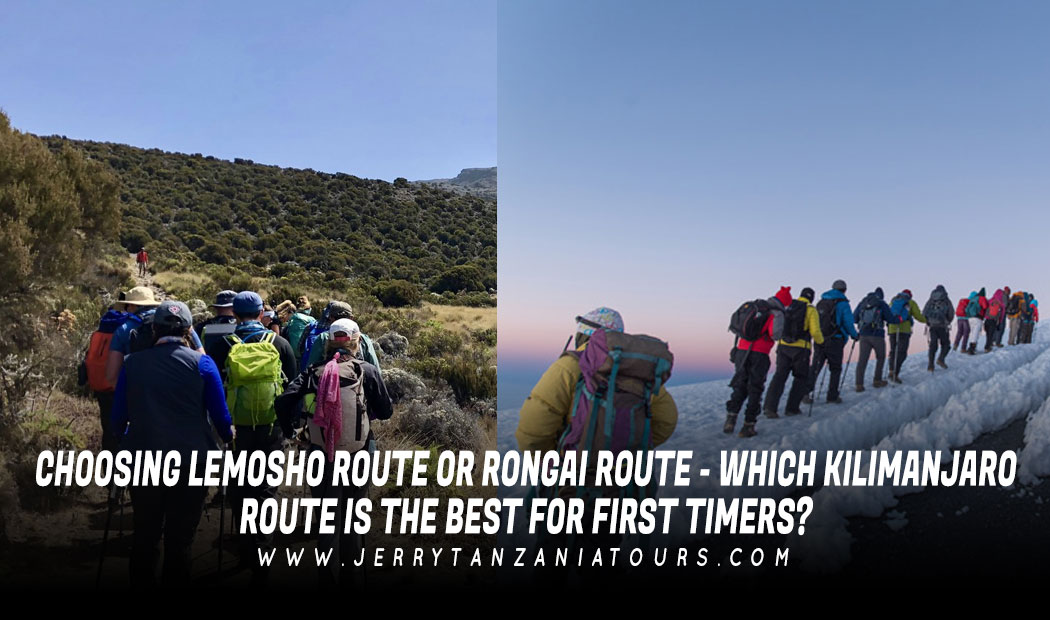 Choosing Lemosho Route Or Rongai Route – Which Kilimanjaro Route is The Best for First-Timers?