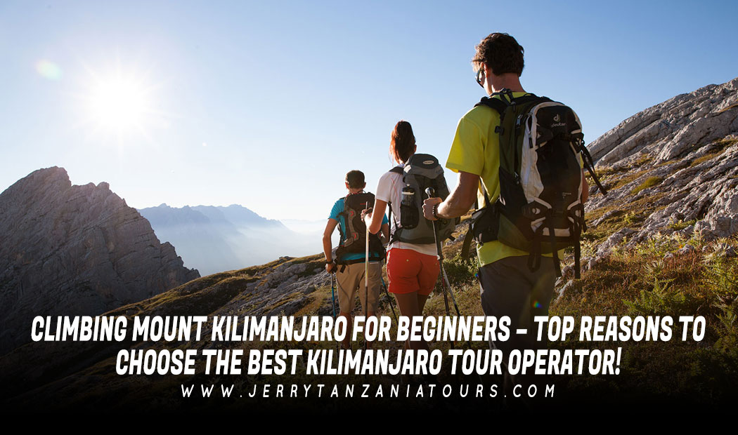 Climbing Mount Kilimanjaro for Beginners – Top Reasons to Choose the Best Kilimanjaro Tour Operator!