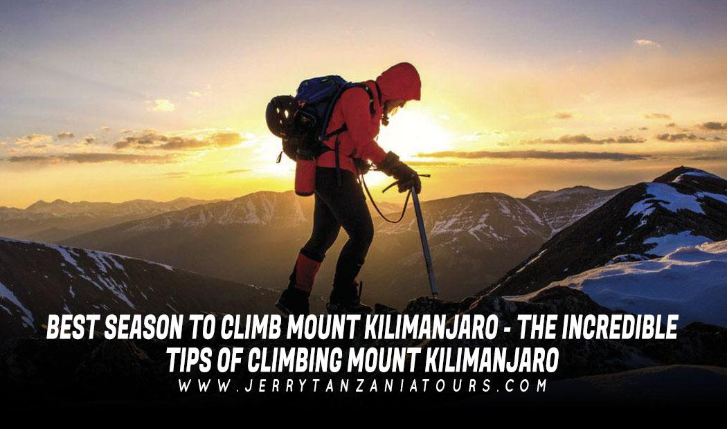 Best Season To Climb Mount Kilimanjaro – the Incredible Tips of Climbing Mount Kilimanjaro