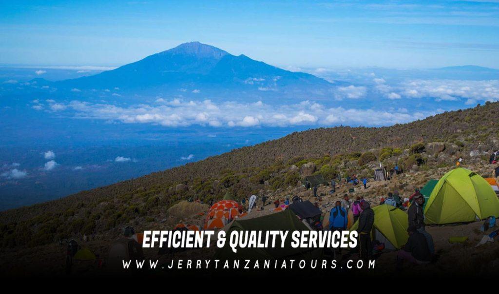 Efficient & Quality Services