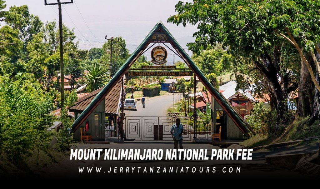 Mount Kilimanjaro National Park Fee