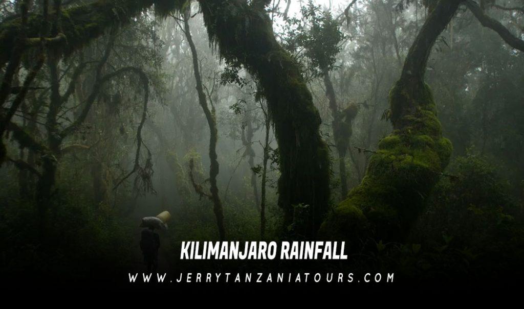 Kilimanjaro Rainfall
