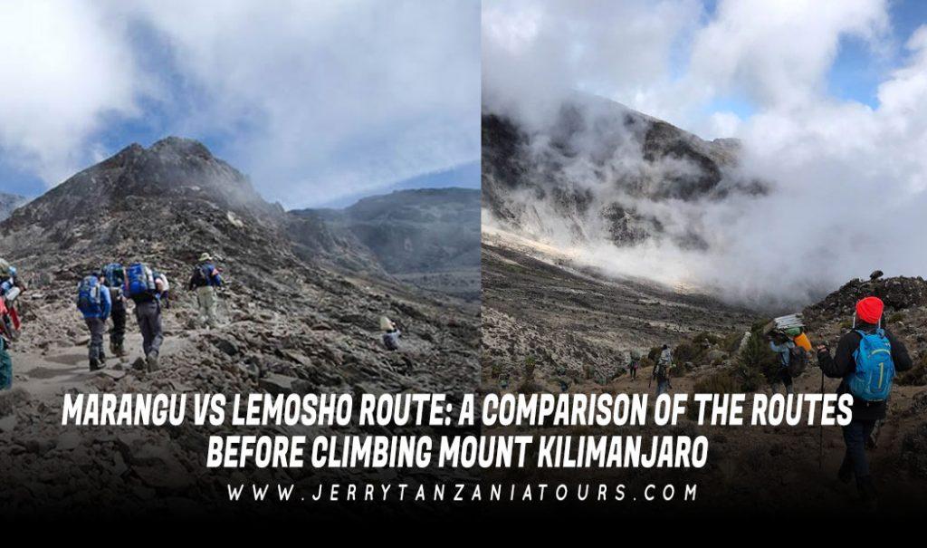 Marangu Vs Lemosho Route: A Comparison of the Routes Before Climbing Mount Kilimanjaro