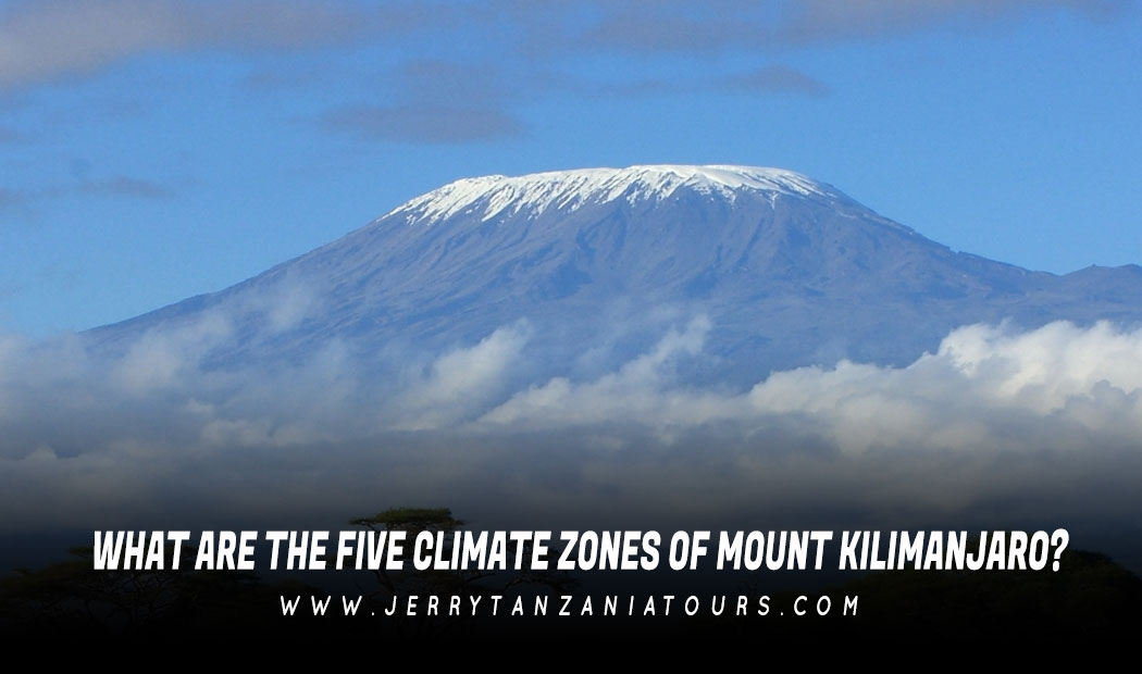 What Are The Five Climate Zones Of Mount Kilimanjaro?