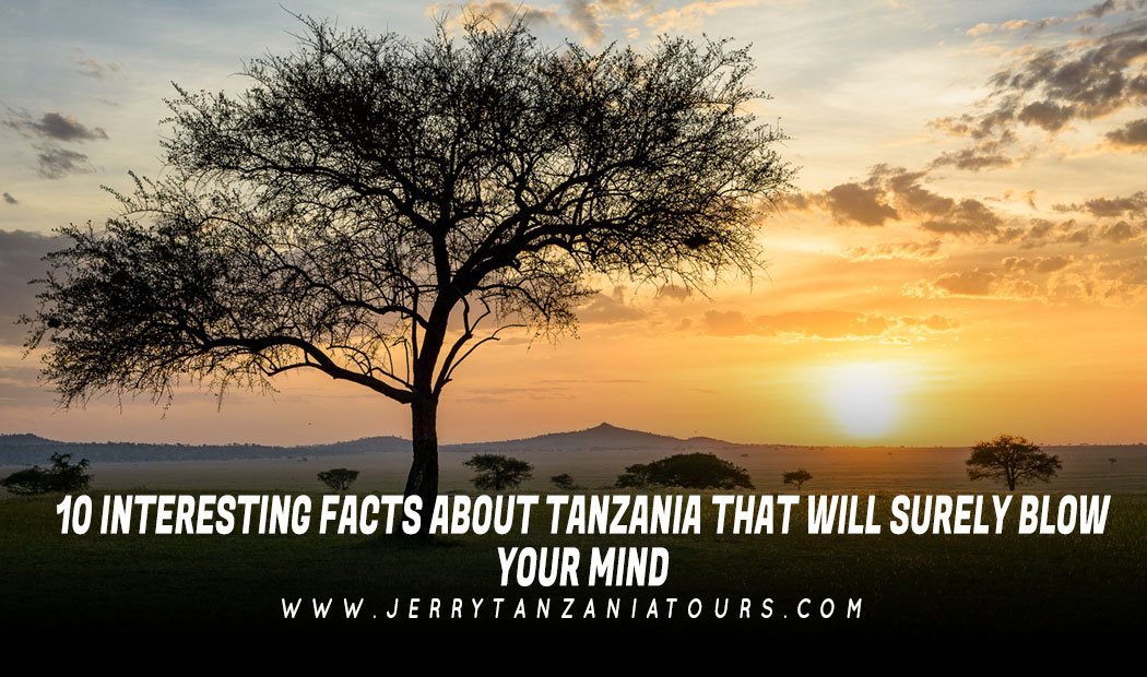 10 Interesting Facts About Tanzania that Will Surely Blow Your Mind