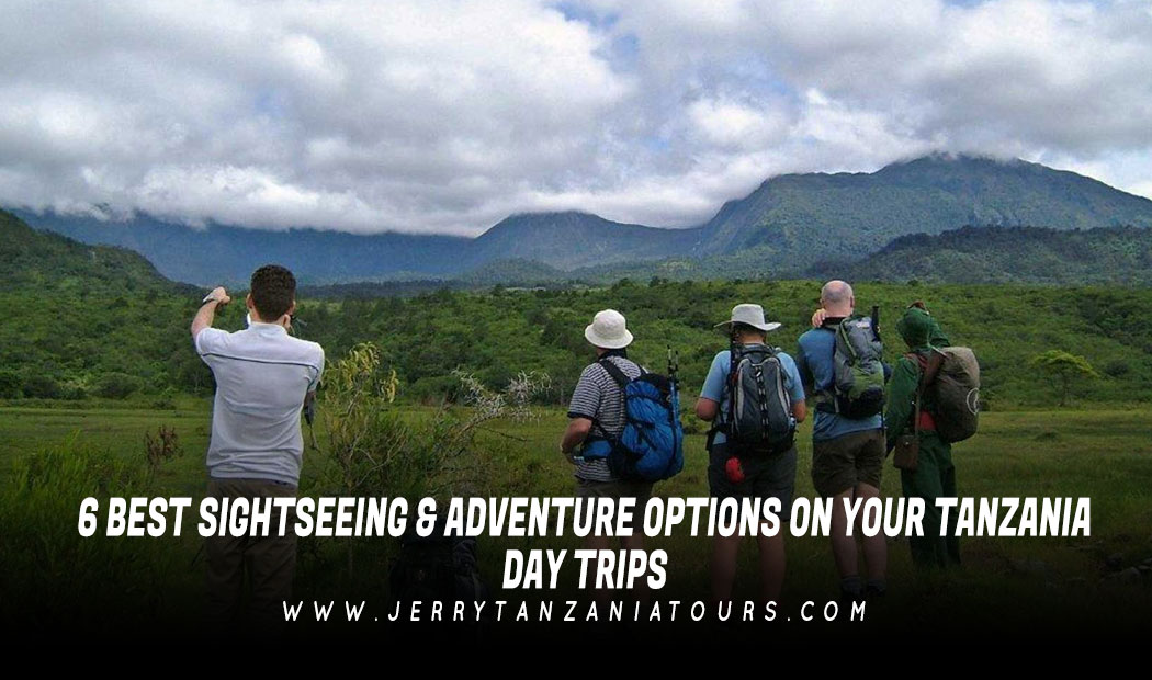6 Best Sightseeing & Adventure Options on Your Tanzania Day Trips