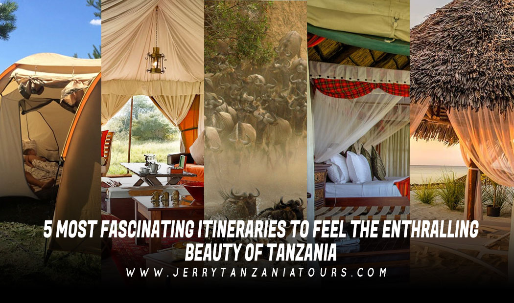 5 Most Fascinating Itineraries To Feel The Enthralling Beauty Of Tanzania