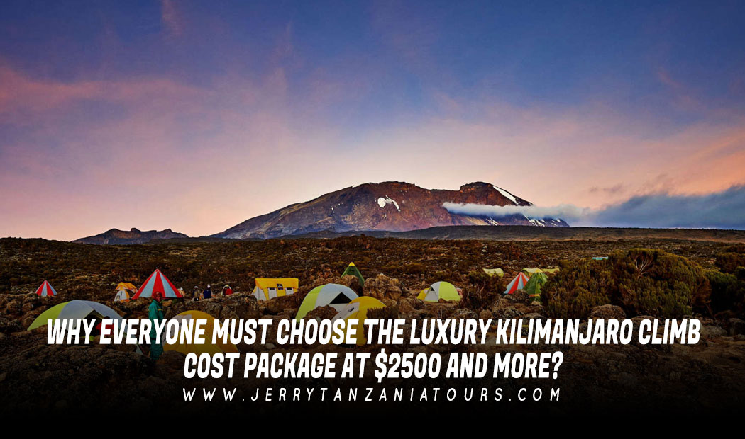 Why Everyone Must Choose The Luxury Kilimanjaro Climb Cost Package At $2500 And More?