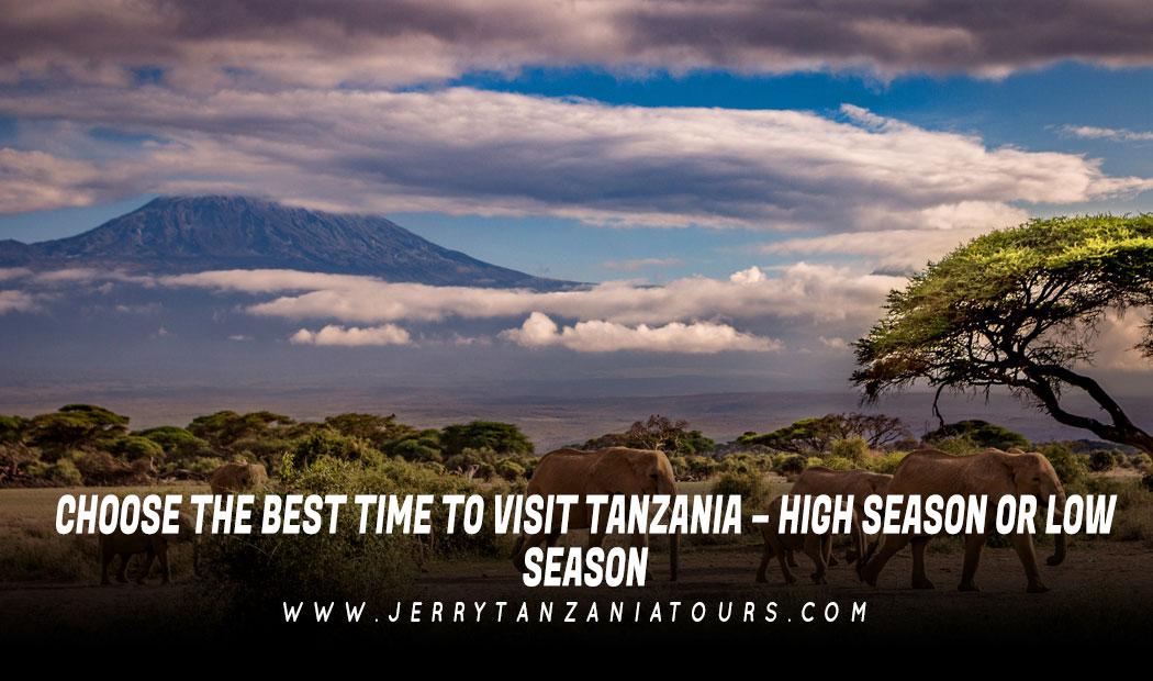 Choose The Best Time To Visit Tanzania – High Season Or Low Season