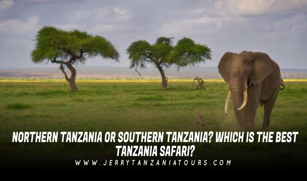 Northern Tanzania Or Southern Tanzania? Which Is The Best Tanzania Safari?
