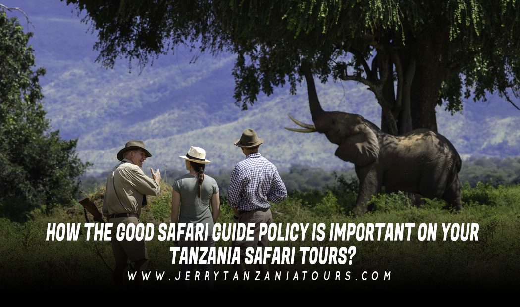 How The Good Safari Guide Policy Is Important On Your Tanzania Safari Tours?