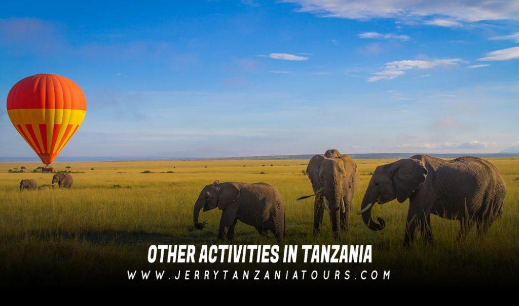 Activities In Tanzania