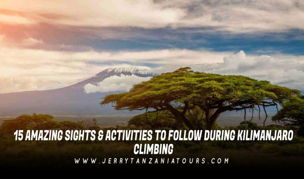 15-Amazing-Sights-Activities-To-Follow-During-Kilimanjaro-Climbing
