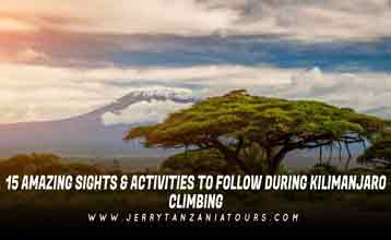 15 Amazing Sights & Activities To Follow During Kilimanjaro Climbing