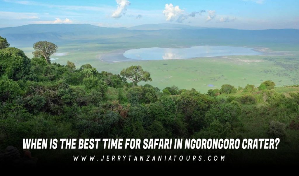 Best Time For Safari In Ngorongoro Crater