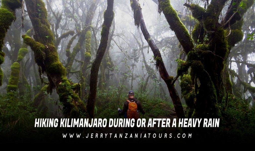HIKING-KILIMANJARO-DURING-OR-AFTER-A-HEAVY-RAIN