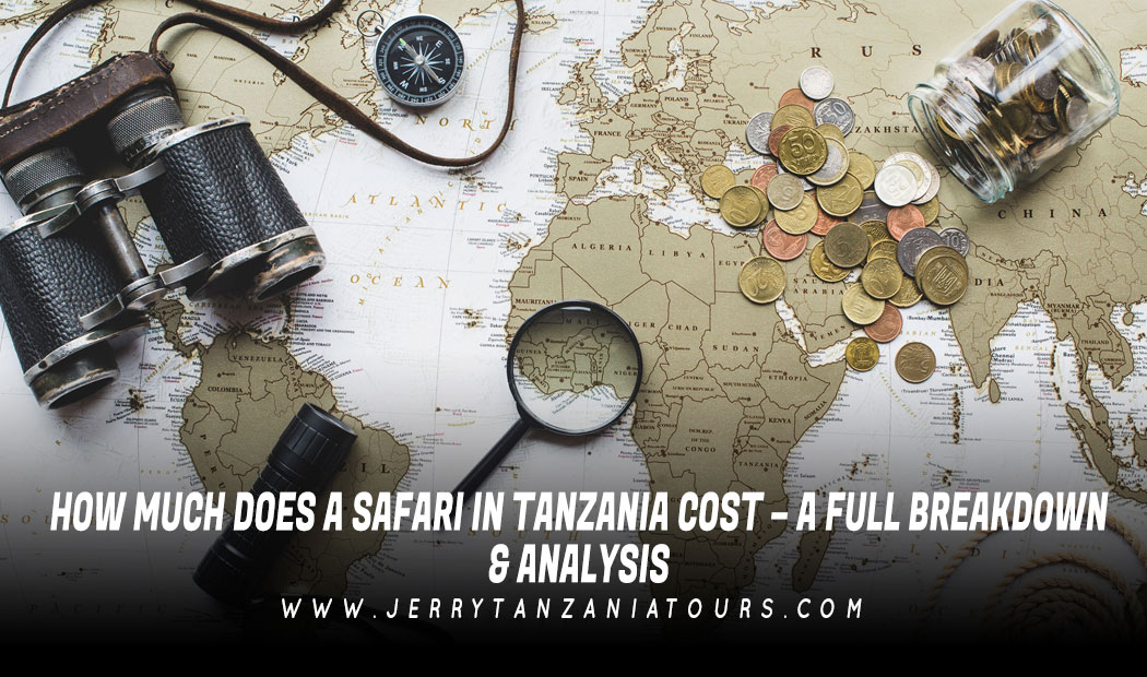 How Much Does A Safari In Tanzania Cost – A Full Breakdown & Analysis