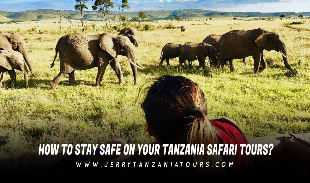 How to Stay Safe on Your Tanzania Safari Tours