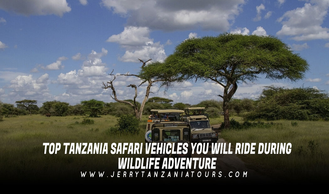 Top Tanzania Safari Vehicles You Will Ride During Wildlife Adventure