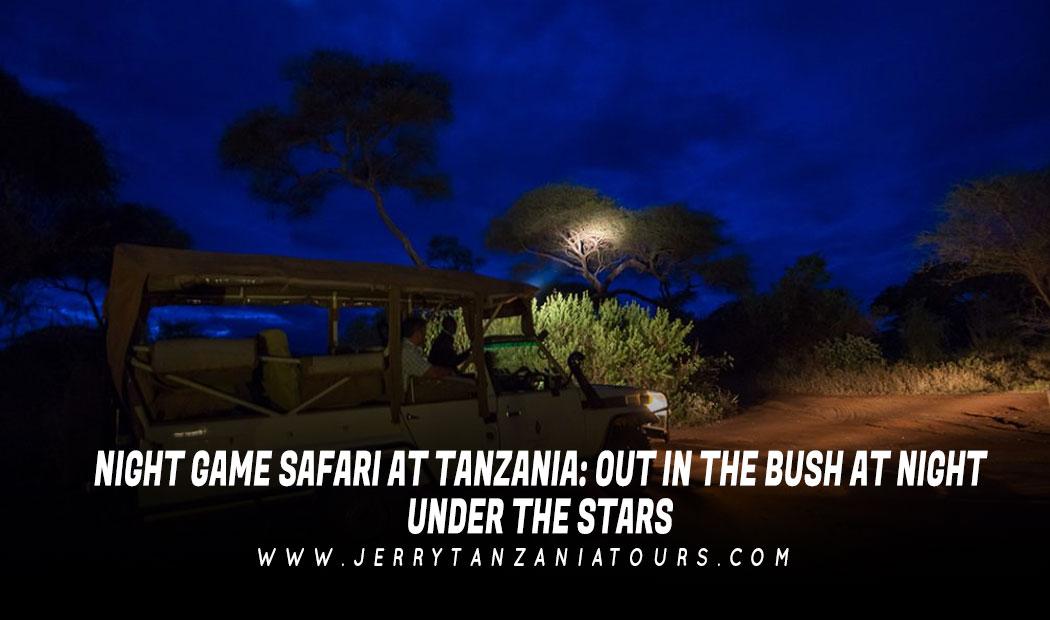 Night Game Safari At Tanzania