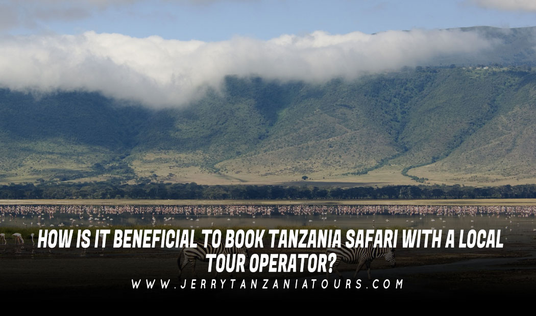 How Is It Beneficial To Book Tanzania Safari With A Local Tour Operator?