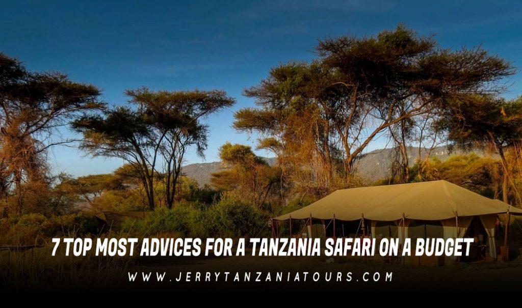 Tanzania Safari On A Budget