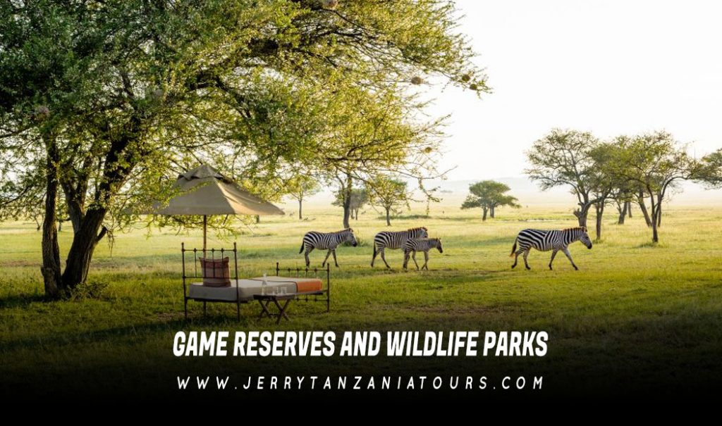 Game Reserves and Wildlife Parks In Tanzania