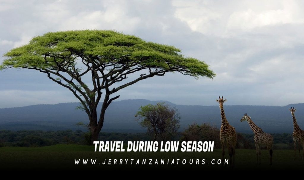 Travel during Low Season