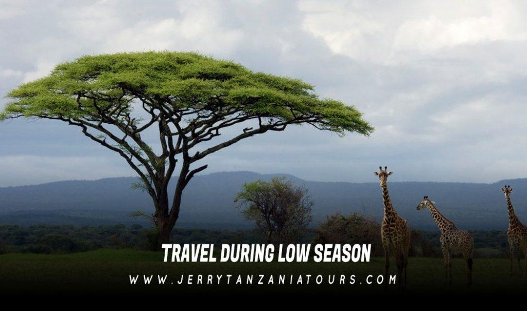 Travel during Low Season