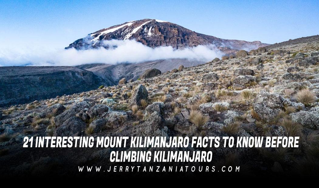 21 Interesting Mount Kilimanjaro Facts To Know Before Climbing Kilimanjaro