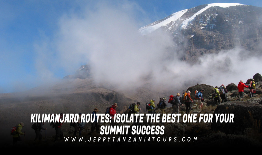 Kilimanjaro Routes – Isolate the Best One for Your Summit Success