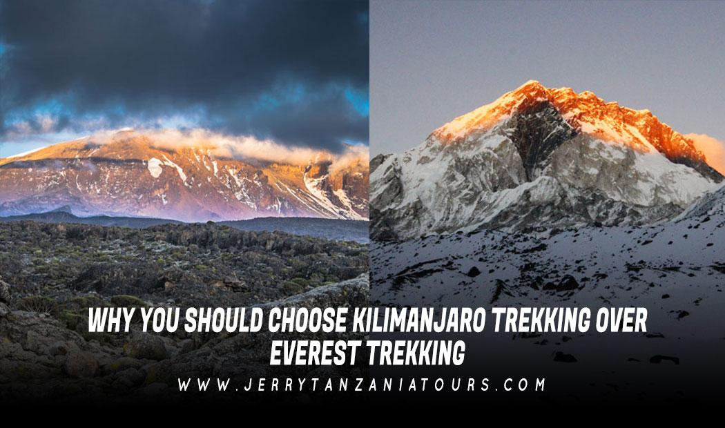 Why You Should Choose Kilimanjaro Trekking Over Everest Trekking?