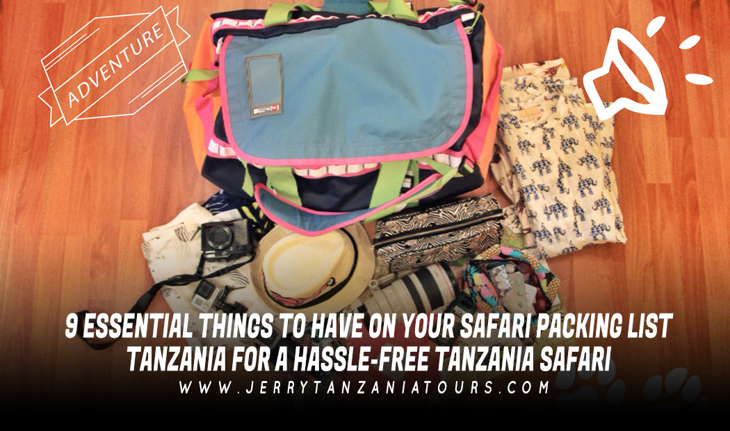 9 Essential Things To Have On Your Safari Packing List Tanzania For A Hassle-Free Tanzania Safari