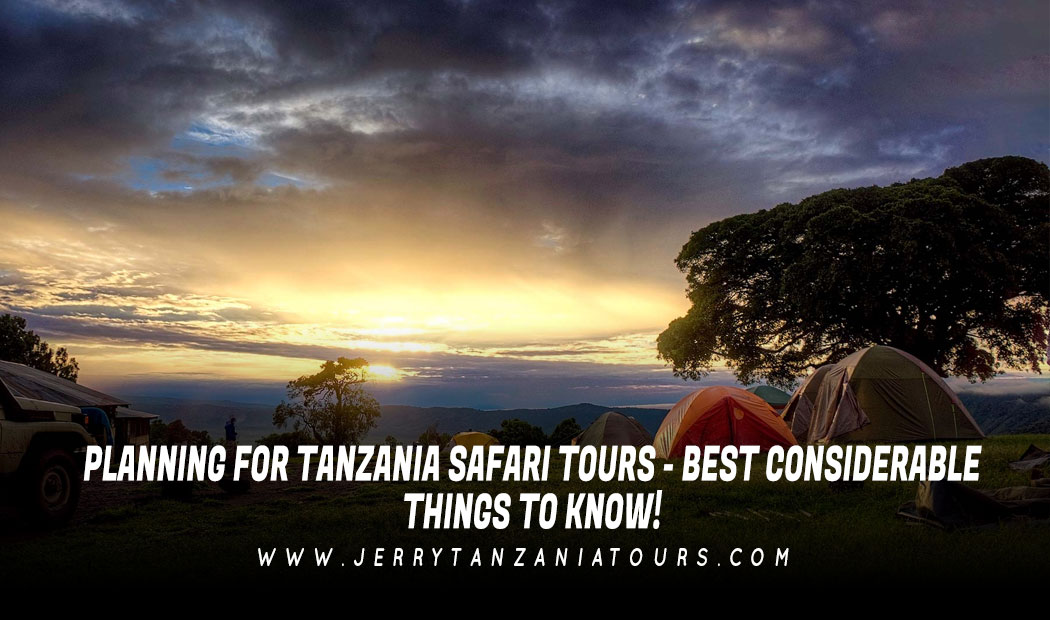 Planning For Tanzania Safari Tours – Best Considerable Things To Know!