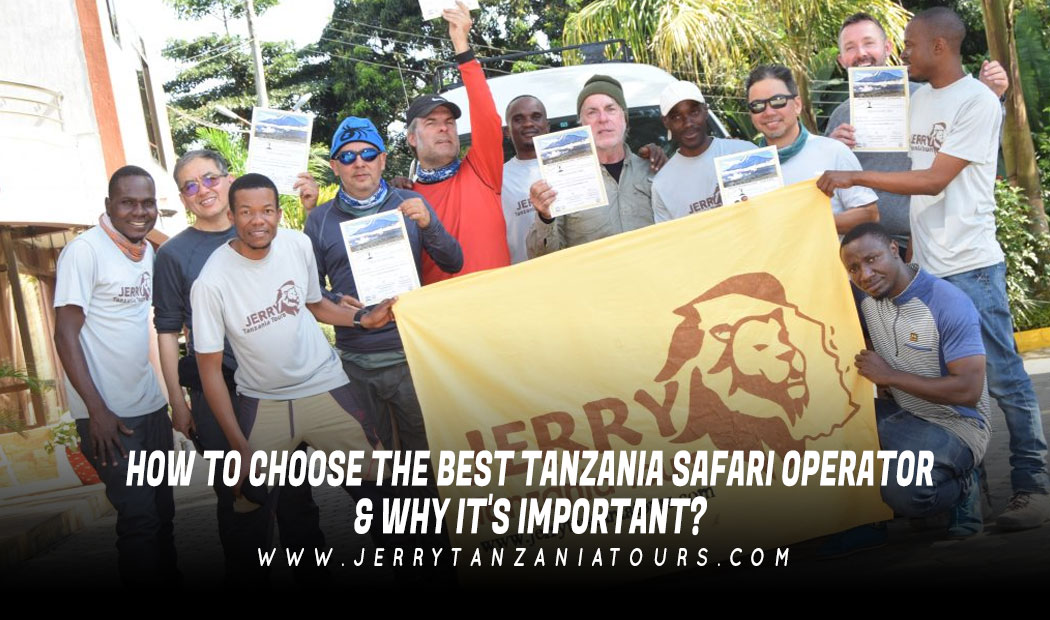 How To Choose Your Best Tanzania Safari Operator & Why It's Important?