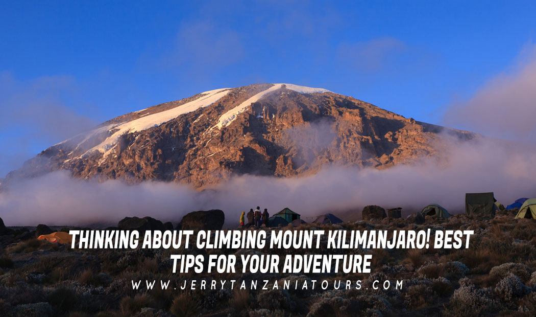 Thinking About Climbing Mount Kilimanjaro! Best Tips For Your Adventure
